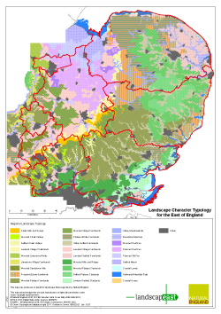 East of England Landscape Typology - A3 Portrait Map