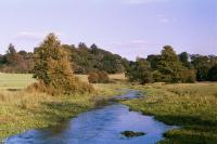 River Mimram, Tewin Meadows, Hertfordshire ( HCC Landscape )