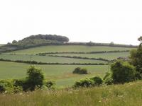 Chalk Hills and Scarps + The Middle Chalk scarp at Newfield Hill, Weston, Herts. ( Geo-East)