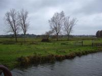 Valley Meadowlands + Grazing marsh between Beccles and Bungay. ( L Marsden / A Yardy)