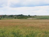 Lowland Village Farmlands + Lowland village farmlands view from the A149 towards Burnham Norton, Norfolk. (© Jonathan Dix)