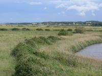 View across the coastal levels east towards Cley next the sea, Norfolk. ( Jonathan Dix)