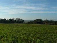 Lowland Settled Farmlands + Views southward towards Yare valley with alder carr woodland on fringes of marshland. Norfolk. (© L Marsden / A Yardy)