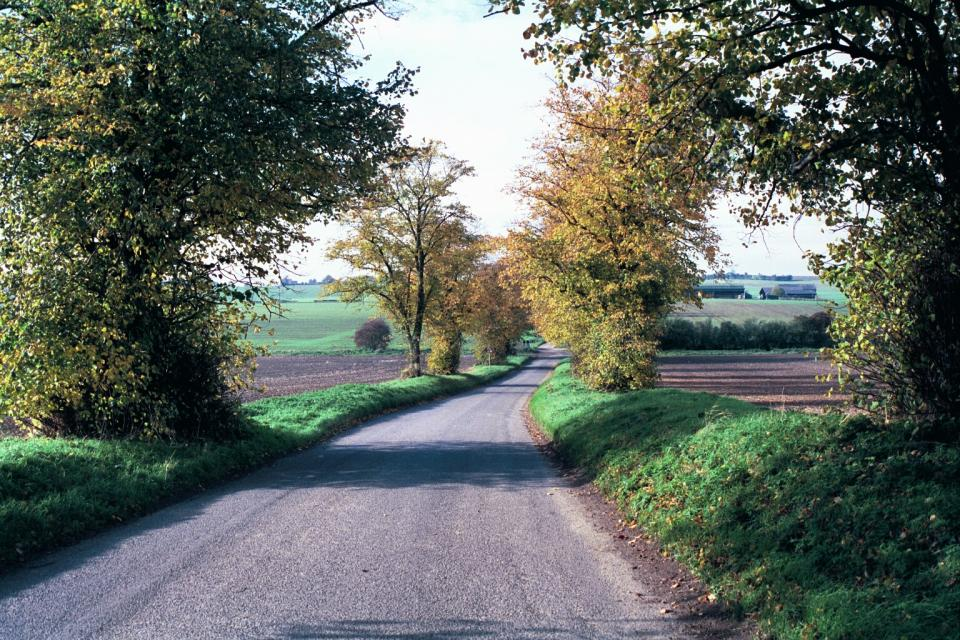 Wooded Village Farmlands + Whiteley lane, Buckland, Hertfordshire (1999) (© HCC Landscape)