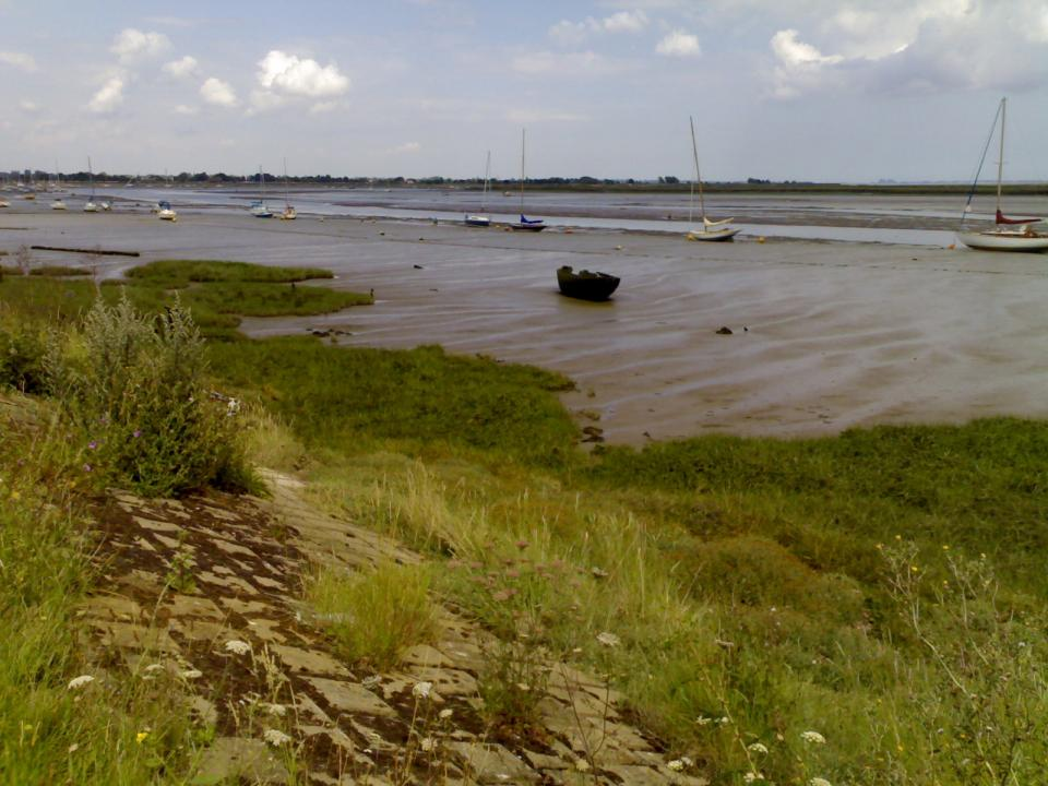 Saltmarsh and Intertidal Flats + near Heybridge Basin looking East (2011) (© Simon Odell)