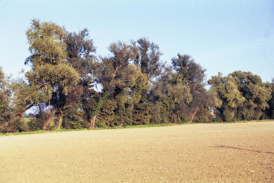 Lowland Village Farmlands + nr Mobbs Hole, Ashwell, Hertfordshire (© HCC Landscape)