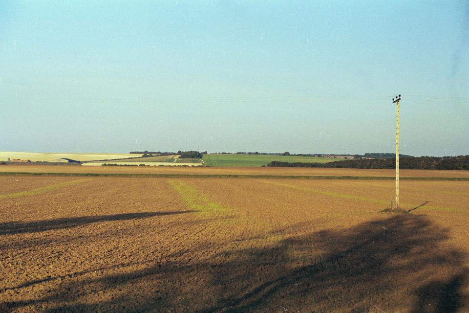 Chalk Hills and Scarps + Nr Newnham, Hertfordshire (© HCC Landscape)