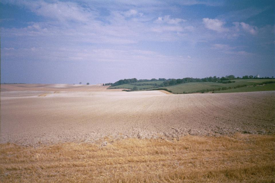 Chalk Hills and Scarps - Looking towards Therfield, Hertfordshire from Coombe Road (© HCC Landscape)