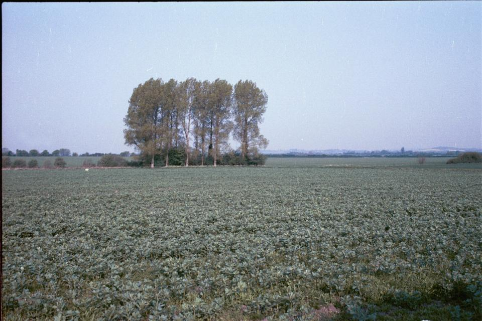 Lowland Village Chalklands + North of Hexton, Hertfordshire (1999) (© HCC Landscape)