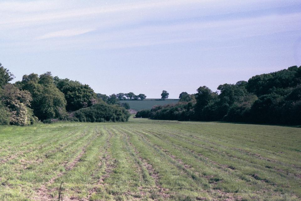 Settled Chalk Valleys + Ash Valley at Upwick Green, Hertfordshire (© HCC Landscape)