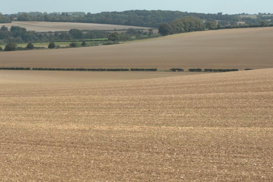 Chalk Hills and Scarps - the eastern fringe of this Landscape Type between Dalham and Moulton in west Suffolk (© Suffolk County Council)