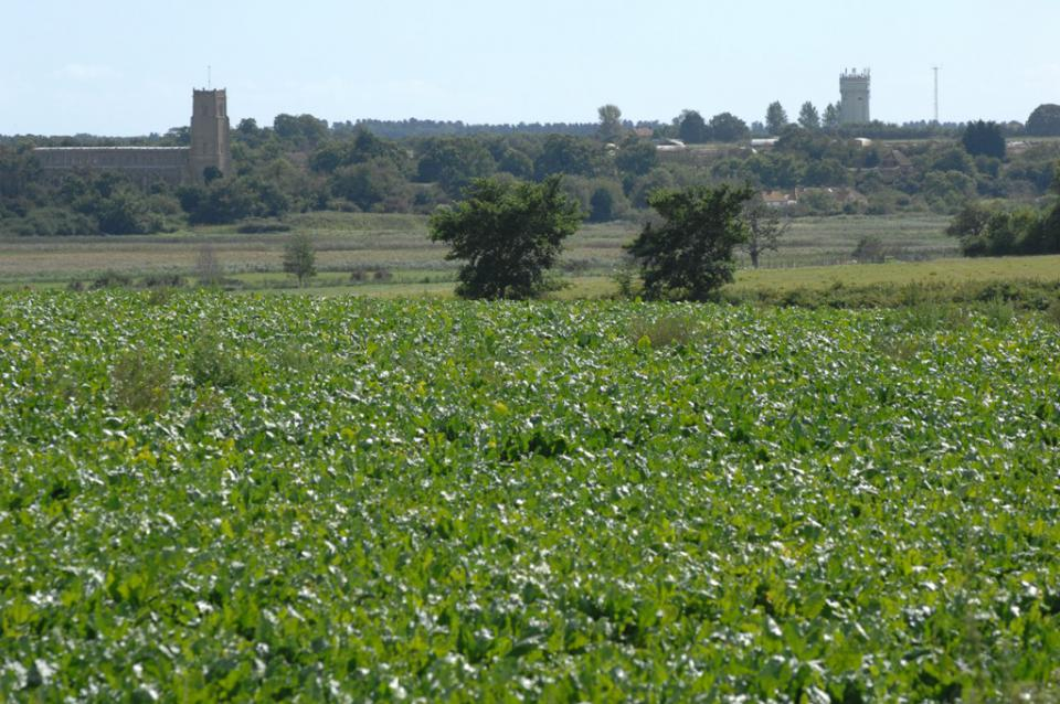 The floor and slopes of the Blyth valley in east Suffolk (© Suffolk County Council)
