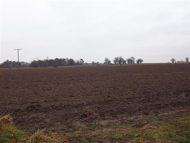 Arable upland to north of River Yare near Strumpshaw, Norfolk.  (© L Marsden / A Yardy)