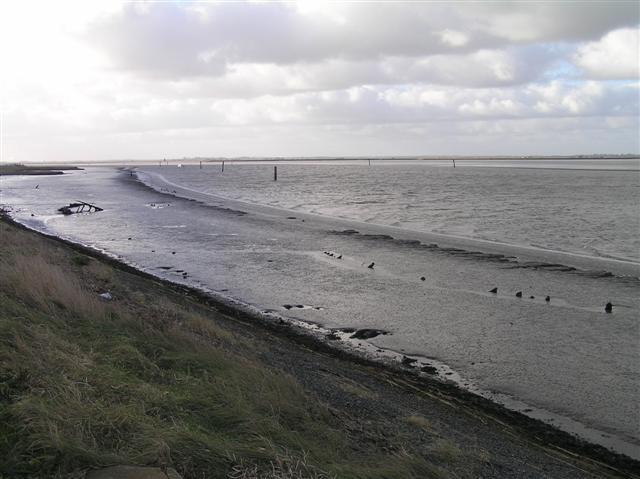 Breydon Water showing Gt Yarmouth syeline in background.  (© L Marsden / A Yardy)