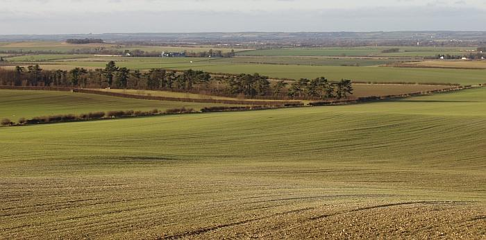 Chalk Hills and Scarps + Chalk landscape at Heydon, Cambridgeshire. (© Geo-East)