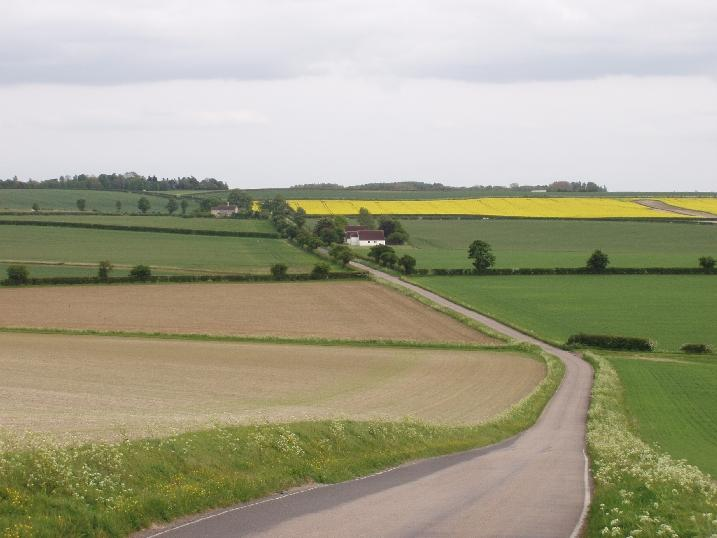 Chalk Hills and Scarps + Chalk landscape at Sandon, Herts, view towards Wooded Village Farmlands. (© Geo-East)