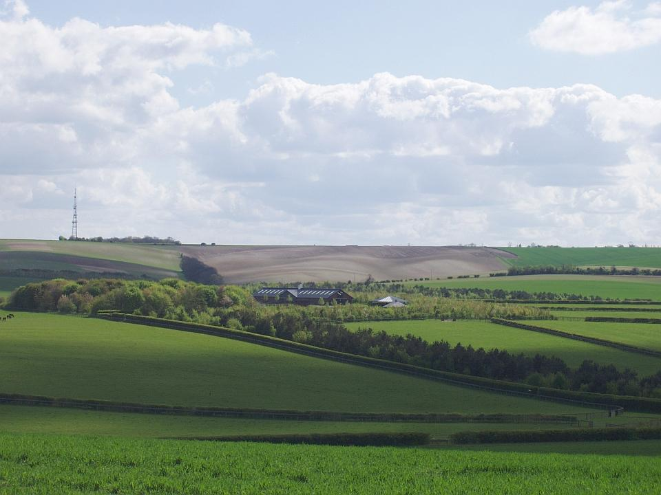 Chalk Hills and Scarps + The Upper Chalk scarp at Barkway, Herts. (© Geo-East)
