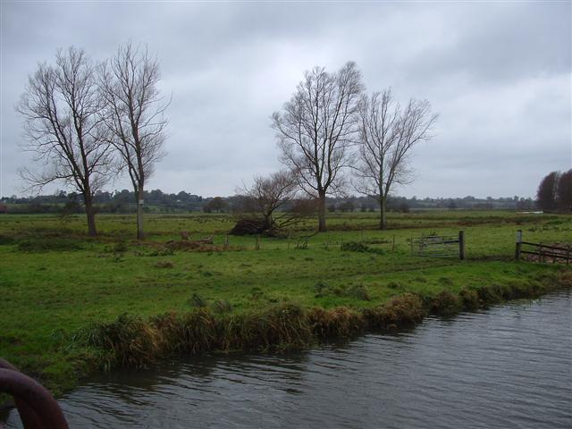 Valley Meadowlands + Grazing marsh between Beccles and Bungay. (© L Marsden / A Yardy)