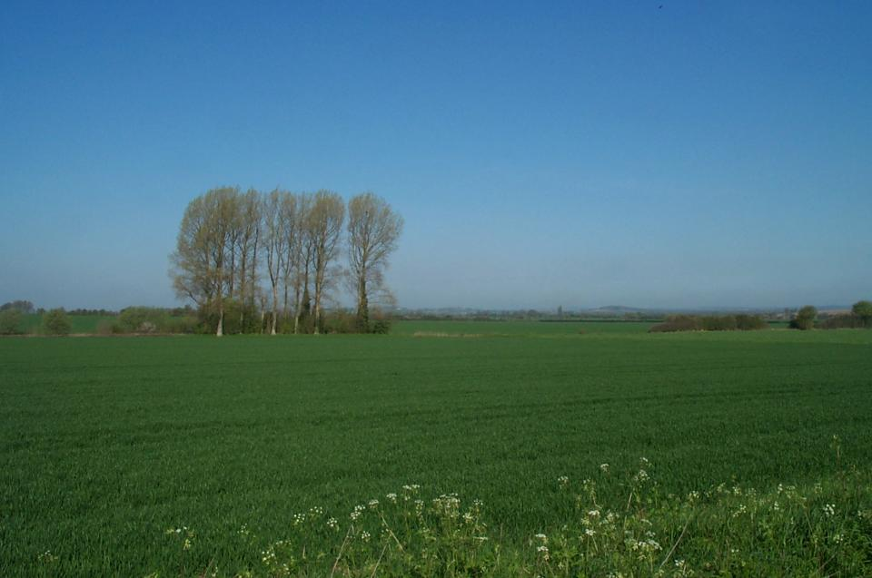 Lowland Village Chalklands + North of Hexton, Hertfordshire (2004) (© HCC Landscape)