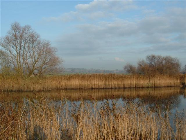 Valley Meadowlands + Long Dam Level, Waveney Valley, Norfolk.  (© L Marsden / A Yardy)