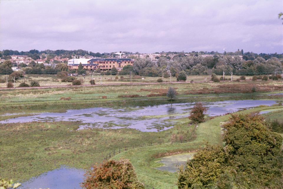 Valley Meadowlands - Kings Meads, Hertford (© HCC Landscape)