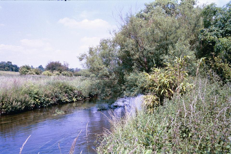 Valley Meadowlands - River Lea near Hertford (© HCC Landscape)