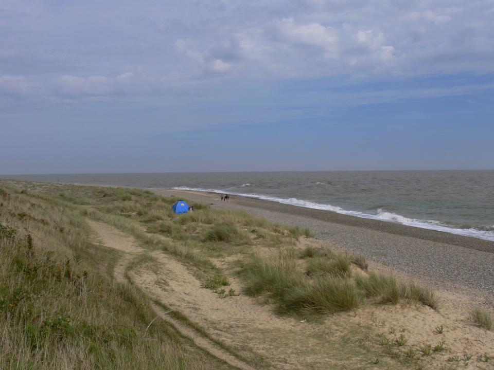 Coastal Dunes + Looking north on the dunes between Thorpeness and Sizewell, Suffolk. (© Jonathan Dix)