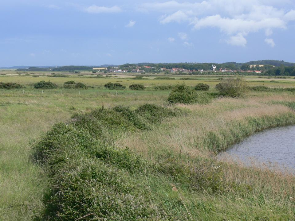 View across the coastal levels east towards Cley next the sea, Norfolk. (© Jonathan Dix)