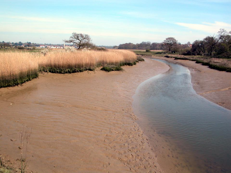 Roman River looking towards Rowhedge and Wivenhoe (© Essex CC)