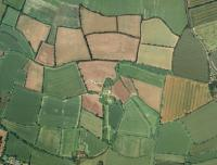 Intact pattern of early random enclosure near Eye in Suffolk (© Suffolk County Council)