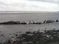 Saltmarsh and Intertidal Flats + Breydon Water showing remains of old wherry in foreground. (© L Marsden / A Yardy)