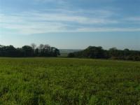 Lowland Settled Farmlands + Views southward towards Yare valley with alder carr woodland on fringes of marshland. Norfolk. (© L Marsden / A Yardy)