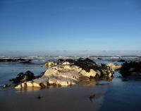 Chalk scoured clean by tide after full moon. © Copyright R Yeomans. 2010 (Geo-East photo gallery)